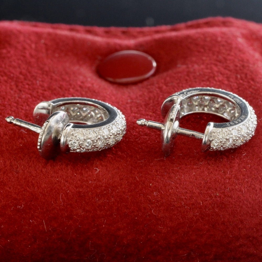 Platinum sparkle earrings with diamonds