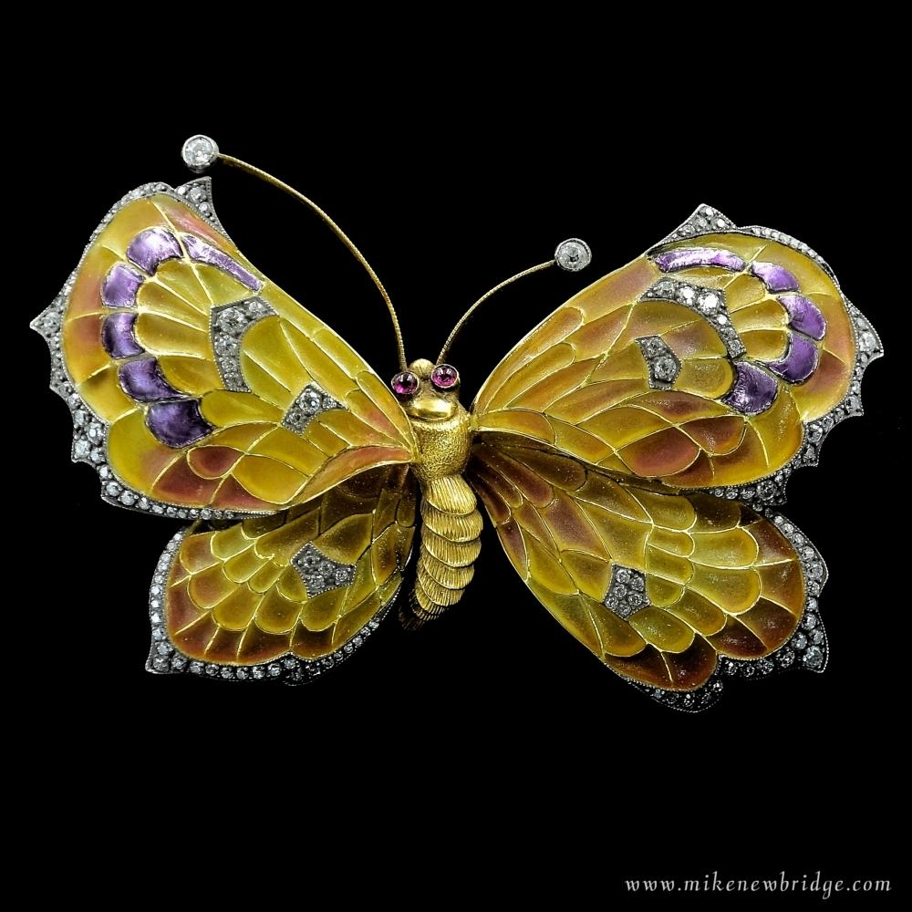 Vlinderbroche vensteremail