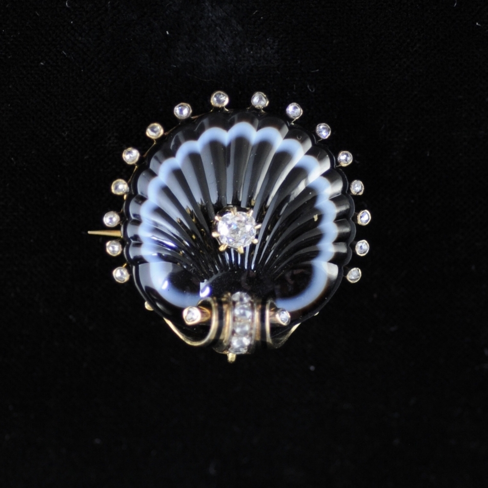 Scallop brooch