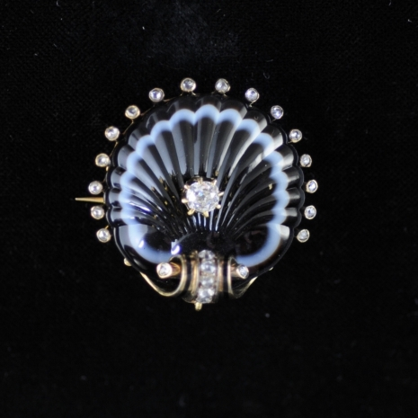 Scallop brooch