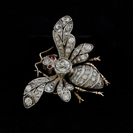 Victorian insect brooch